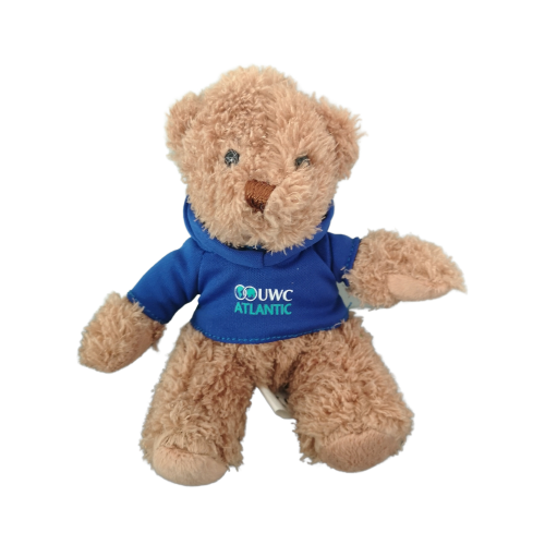 Gift Teddy – Small